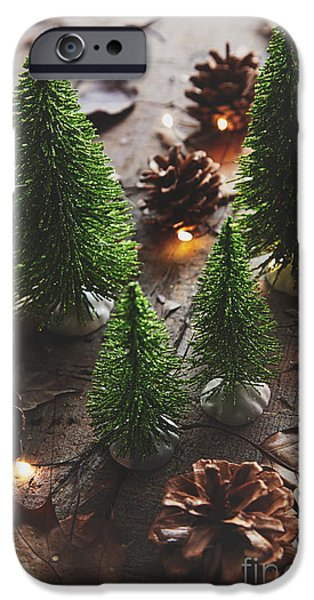 Celebration Photographs iPhone Cases - Little trees with pine cones and leaves  iPhone Case by Sandra Cunningham