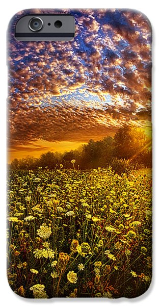 Love Laces iPhone Cases - Live Every Moment iPhone Case by Phil Koch