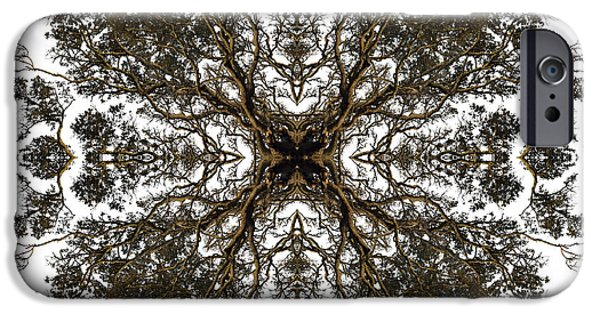 Filigree iPhone Cases - Live Oak Lace iPhone Case by Debra and Dave Vanderlaan