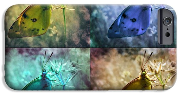 Abstract Expressionist Photographs iPhone Cases - Lives of a Butterfly iPhone Case by Marianna Mills