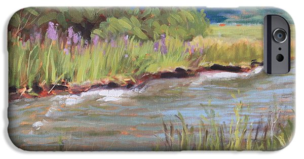 Smithsonian Paintings iPhone Cases - Living Waters iPhone Case by Brenda Sumpter