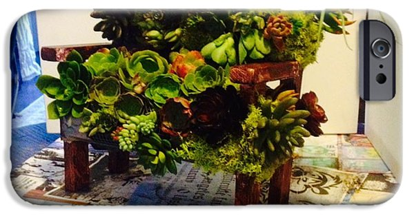 Plants Sculptures iPhone Cases - livingART succulents bench iPhone Case by ARTSHOP los angeles  By Ulrik Neumann