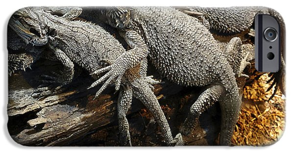 Bonding iPhone Cases - Lizards iPhone Case by Les Cunliffe