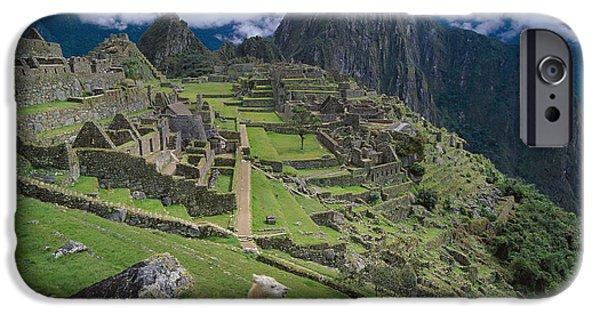 Llama iPhone Cases - Llama At Machu Picchus Ancient Ruins iPhone Case by Chris Caldicott