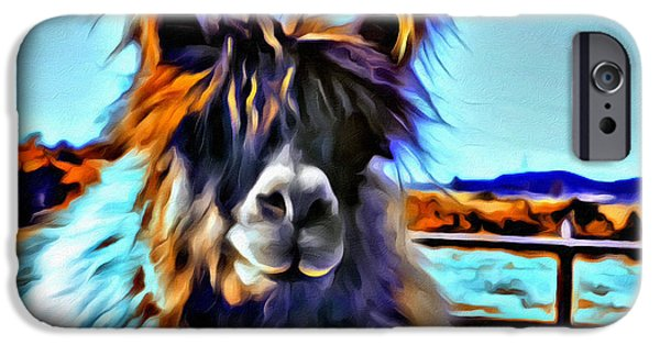 Llama Digital iPhone Cases - Llama iPhone Case by Debra Kirk