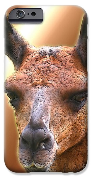 Llama Digital iPhone Cases - Llama Face iPhone Case by Smilin Eyes  Treasures