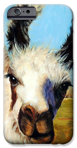 Llama iPhone Cases - Llama in Afternoon Sunlight iPhone Case by Dottie Dracos