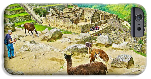 Llama Digital iPhone Cases - Llamas at Machu Picchu-Peru  iPhone Case by Ruth Hager