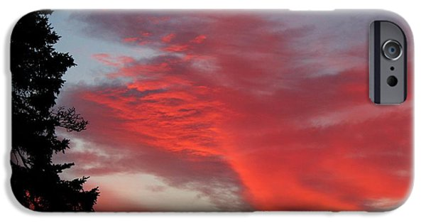 A Summer Evening iPhone Cases - Lobster Sky iPhone Case by Barbara Griffin