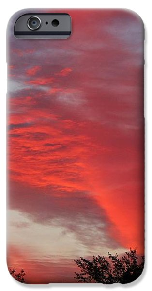 Lobster Sky iPhone Case by Barbara Griffin