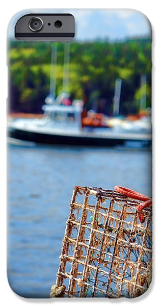 Maine iPhone Cases - Lobster Trap in Maine iPhone Case by Olivier Le Queinec