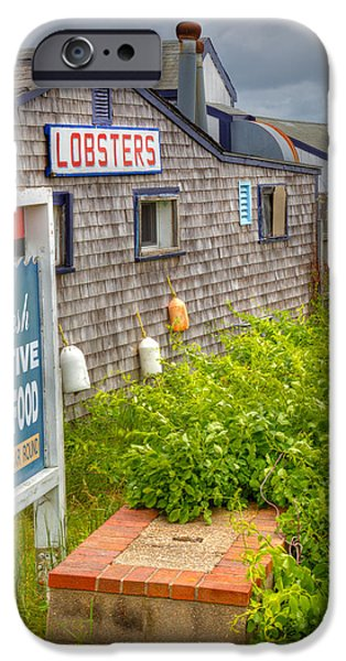 Lobster Shack iPhone Cases - Lobsters on The Cape iPhone Case by Michelle Wiarda