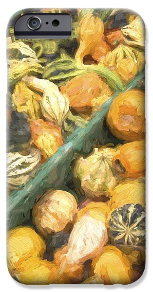Farm Stand Photographs iPhone Cases - Local Glazed Gourds Painterly Effect iPhone Case by Carol Leigh