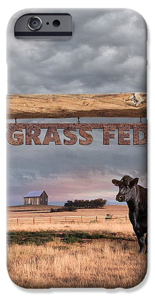 Log Entrance To Grass Fed Angus Beef Ranch iPhone Case by Susan McKenzie
