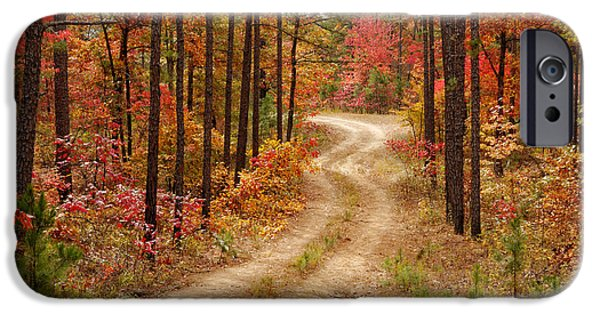Arkansas iPhone Cases - Logging Road in the Ouachita National Forest - Beavers Bend State Park - Poteau - Oklahoma Arkansas iPhone Case by Silvio Ligutti