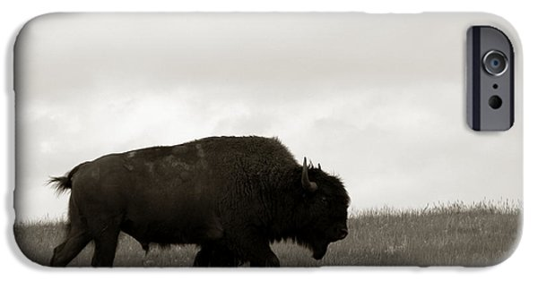 Bison iPhone Cases - Lone Bison iPhone Case by Olivier Le Queinec
