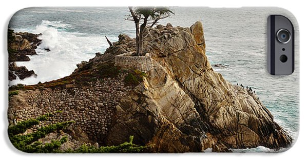 Serenity Scenes iPhone Cases - Lone Cypress Serenity Prayer iPhone Case by Barbara Snyder