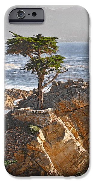 Recently Sold -  - Fog Mist iPhone Cases - Lone Cypress - The icon of Pebble Beach California iPhone Case by Christine Till