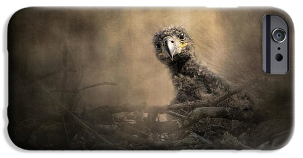Baby Bird iPhone Cases - Lone Eaglet In The Nest iPhone Case by Jai Johnson