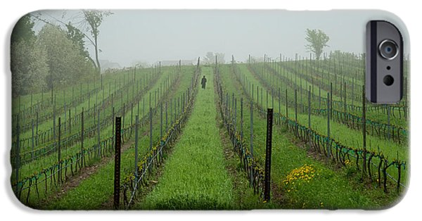 Laborers iPhone Cases - Lone Figure in Vineyard in the Rain on the Mission Peninsula Michigan iPhone Case by Mary Lee Dereske