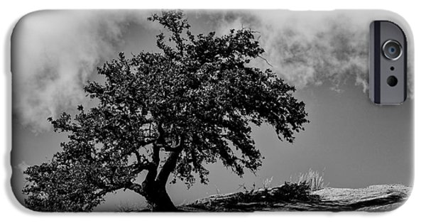 Roosting iPhone Cases - Lone Oak Atop Little Rock - Enchanted Rock State Natural Area Texas Hill Country iPhone Case by Silvio Ligutti
