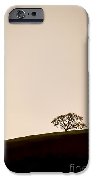 Black And White Florals iPhone Cases - Lone Oak Tree iPhone Case by Holly Martin