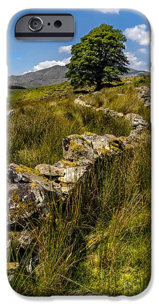 July Digital Art iPhone Cases - Lone Tree iPhone Case by Adrian Evans