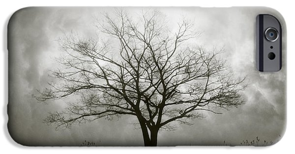 Dave Digital Art iPhone Cases - Lone Tree and Clouds iPhone Case by David Gordon