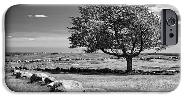 Rural Scenes Digital Art iPhone Cases - Lone Tree In Maine Blueberry Field iPhone Case by Keith Webber Jr