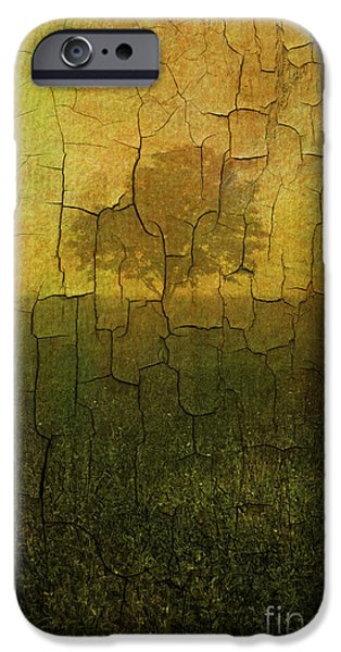 Soil Digital Art iPhone Cases - Lone Tree in Meadow -Textured iPhone Case by David Gordon