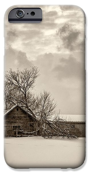 Winter Storm iPhone Cases - Loneliness sepia iPhone Case by Steve Harrington