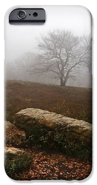 Fall Scenes iPhone Cases - Lonely Tree On Cold And Desolate Landscape iPhone Case by Mikel Martinez de Osaba