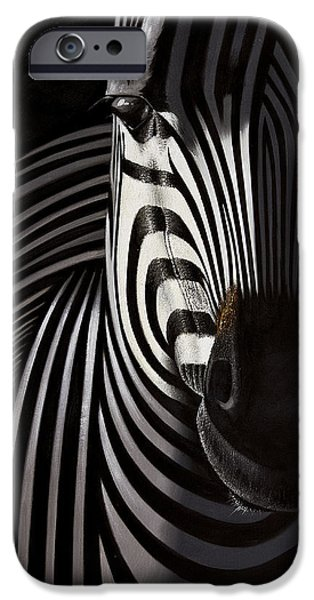 Freedom Reliefs iPhone Cases - Lonely   zebra iPhone Case by Raphael  Sanzio