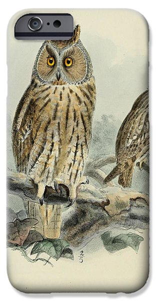 Colored Owls iPhone Cases - Long Eared Owl iPhone Case by J G Keulemans