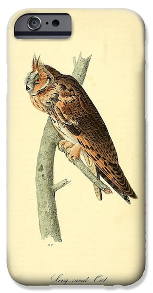 Dentist Drawings iPhone Cases - Long Eared Owl iPhone Case by Philip Ralley