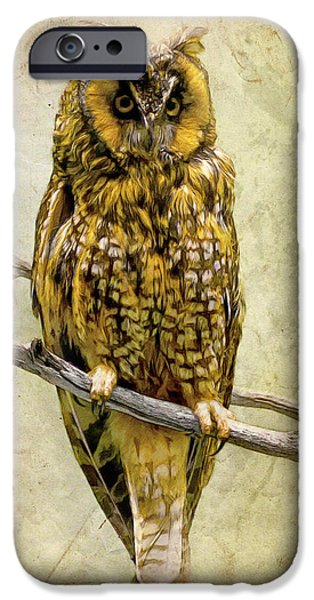 Long Eared Owl iPhone Case by Ray Downing