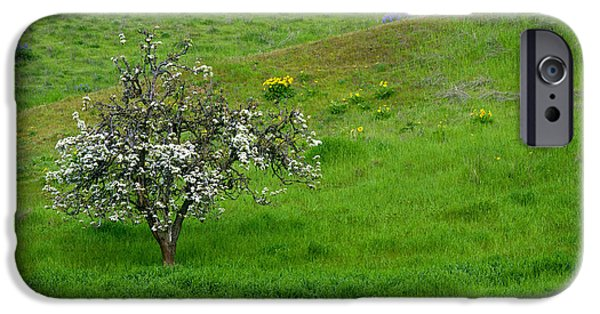 Meadow Photographs iPhone Cases - Long Forgotten iPhone Case by Mike  Dawson
