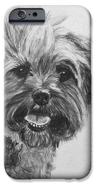 Cute Puppy iPhone Cases - Long Haired Yorkshire Terrier iPhone Case by Kate Sumners