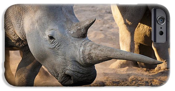Rhinocerus iPhone Cases - Long horn iPhone Case by Andy-Kim Moeller