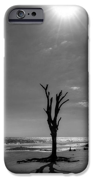 Chrystal iPhone Cases - Long Shadow on Jekyll Island in Black and White iPhone Case by Chrystal Mimbs