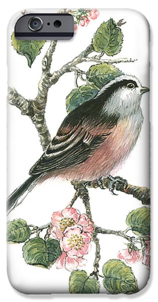 Cherry Blossoms iPhone Cases - Long Tailed Tit and Cherry Blossom iPhone Case by Nell Hill