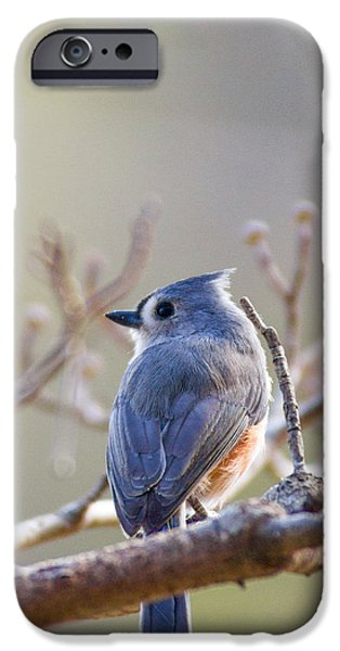 Etc... iPhone Cases - Look Away iPhone Case by Nick Spencer