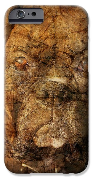 Look into my Eyes iPhone Case by Judy Wood
