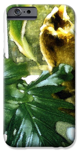 Alley Mixed Media iPhone Cases - Looking and Looking iPhone Case by Elia Peters