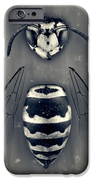Nature Study iPhone Cases - Looking Down Upon Myself iPhone Case by Adam Romanowicz