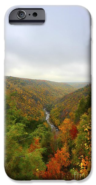 Looking downstream at Blackwater River Gorge in fall iPhone Case by Dan Friend