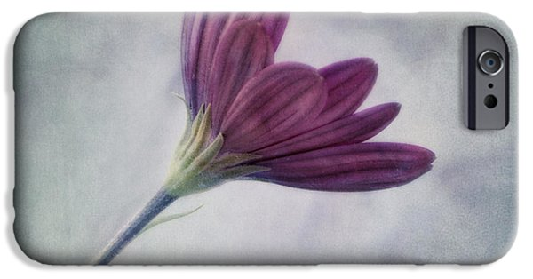 Floral Art iPhone Cases - Looking For You iPhone Case by Priska Wettstein