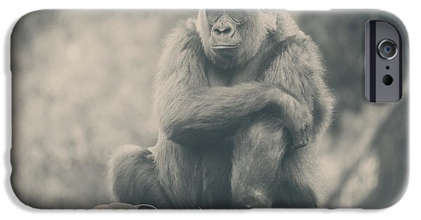 Monotone iPhone Cases - Looking So Sad iPhone Case by Laurie Search