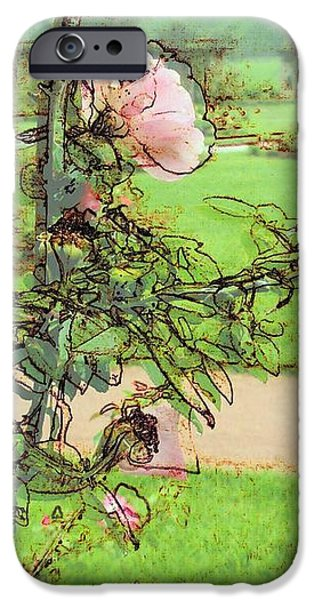 Looking Through the Rose Vine iPhone Case by Stephanie Hollingsworth