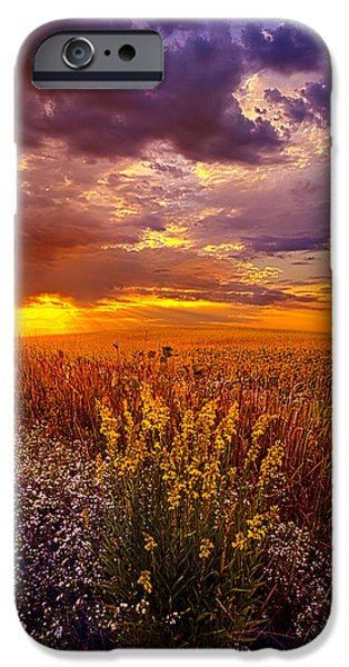 Outdoors iPhone Cases - Lost In A Dream iPhone Case by Phil Koch